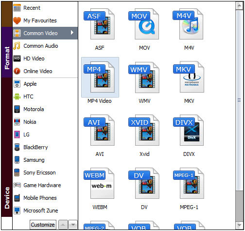 best dvd ripper guide